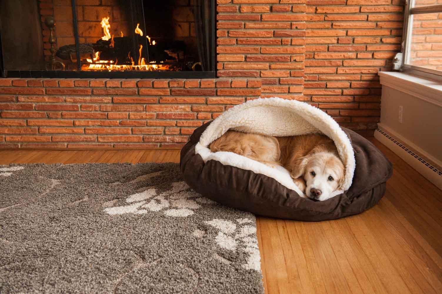 Лежанки домики для собак картинки