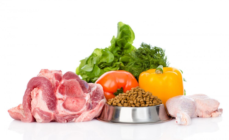 Чем кормить алабая: взрослую собаку и щенка, примерный рацион